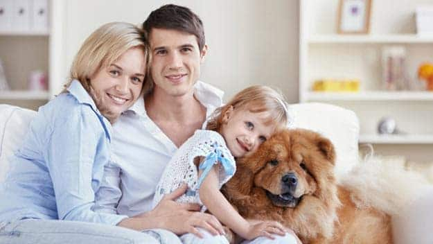 Wills & Trusts dog-young-family Direct Wills West Bromwich